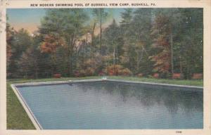 Pennsylvania Bushkill Modern Swimming Pool Of Bushkill Camp 1941