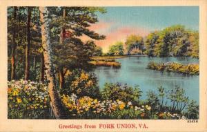 Fork Union Virginia Spring Lake Waterfront Greeting Antique Postcard K72184