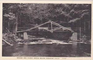 Pennsylvania Paradise Falls Bridge And Picnic Grove below Paradise Falls  Alb...