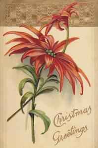Christmas Greetings, Poinsettias, gold detail, PU-1909
