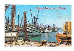 Shrimip Boats at Harbor Key West Florida Postcard Marty Gold Photographer