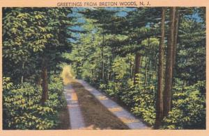 New Jersey Greetings From Breton Woods