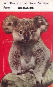 Adelaide Australia Folding Mailing Novelty Bear Antique Postcard