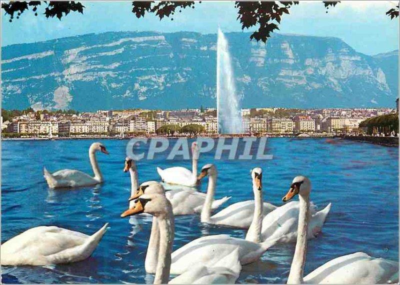 Modern Postcard Geneve The bay
