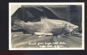RPPC EAGLE NEST NEW MEXICO TROUT FISHING FISH CATCH VINTAGE REAL PHOTO POSTCADR