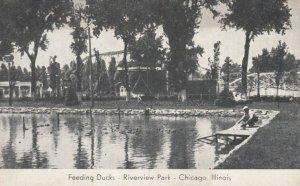CHICAGO, Illinois, 1900-10s ; Feeding the Ducks, Riverview Park