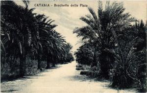 CPA CATANIA Boschetto della Plaia . ITALY (468777)