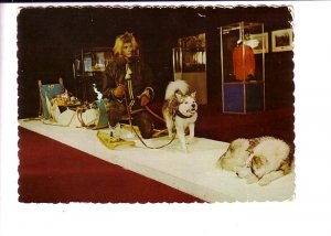 Canadian Mounted Police, RCMP Patrol Dog Museum,  Regina Saskatchewan Used 1978