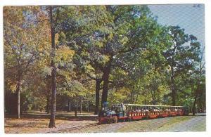 Miniature Train , 40-60s ; Forest Park , St Louis , Missouri