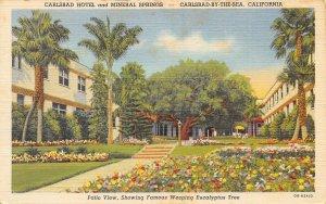 Carlsbad Hotel Mineral Springs US 101 Carlsbad California linen postcard