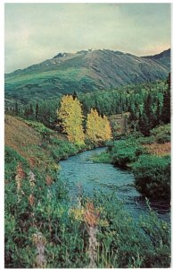 Postcard - The Fall Season River Scene On Kenai Peninsula, Anchorage, Alaska
