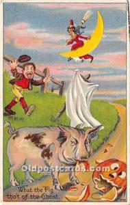 Halloween Postcard Old Vintage Post Card Witch on Moon, Pig Eating Pumpkin 1910