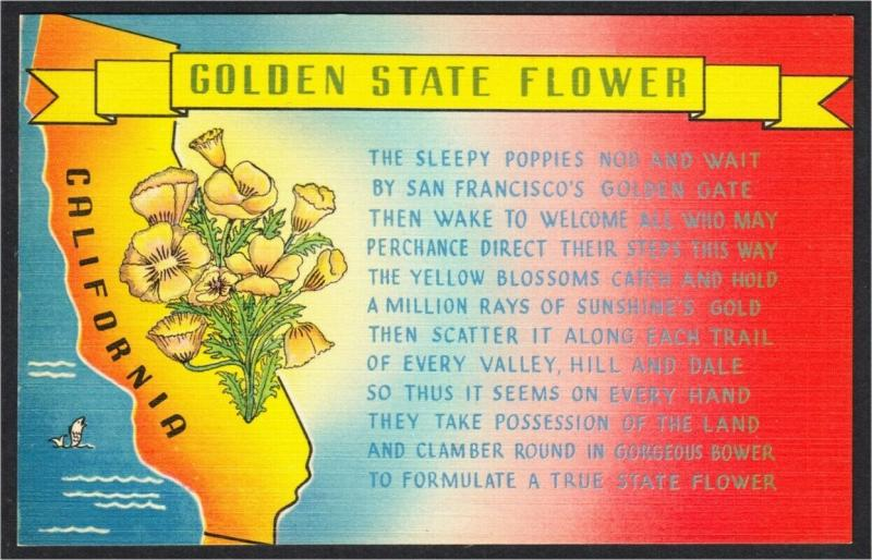 California Golden State Flower Poppy Poem And Map 1940s Linen