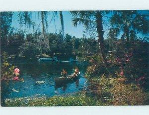 Pre-1980 NATURE SCENE Dunnellon - Near Ocala Florida FL AD2530