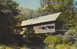 Bump Covered Bridge Campton New Hamshire
