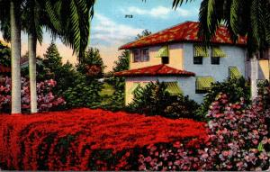 Florida Spanish Type Home and Flame Vine 1941