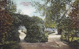 TACOMA, Washington, 1940-1960's; A Shady Walk In Point Defiance Park
