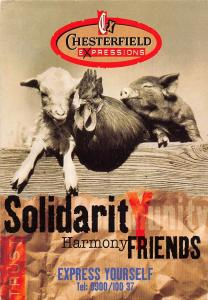 Chesterfield Expressions Solidarit y Harmony Friends Express Yourself