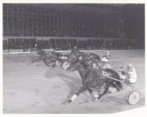 WINDSOR Raceway Harness Horse Race, MADCAP FERNDALE Wins Race
