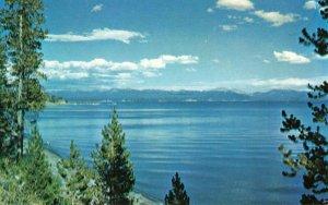 Postcard Yellowstone Lake Yellowstone National Park