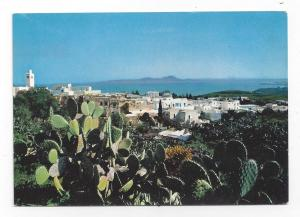 Tunisia Sidi Bou Said Panorama Vue Generale Cacti Postcard