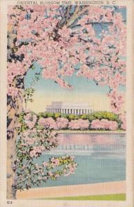 Washington DC Oriental Blossom Time