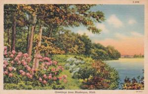 Michigan Greetings From Muskegon 1942 Curteich
