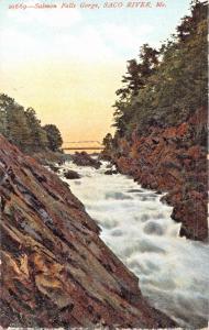 SACO RIVER MAINE~SALMON FALLS GORGE-POSTCARD 1910s