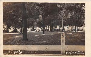 D17/ Miamisburg Ohio Postcard Real Photo RPPC c1910 City Park Scene