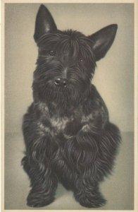 DOG ; Scottie Dog #2 , 1930s