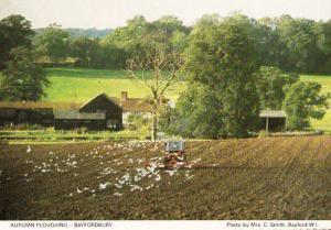Bayfordbury Farm Ploughing Farming Herts Hertfordshire Womens Institute Postcard