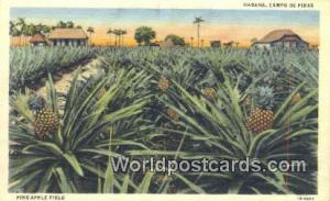 Habana Republic of Cuba Pine Apple Fiels, Campo de Pinas  Pine Apple Fiels, C...