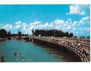 John's Pass Bridge at Holiday Isles Near St Petersburg Florida Fishing