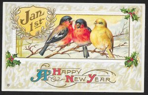 A Happy New Year Birds on Branches & Holly Unused c1910s