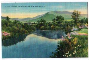 Twin Mt & Ammonoosuc River, White Mts NH