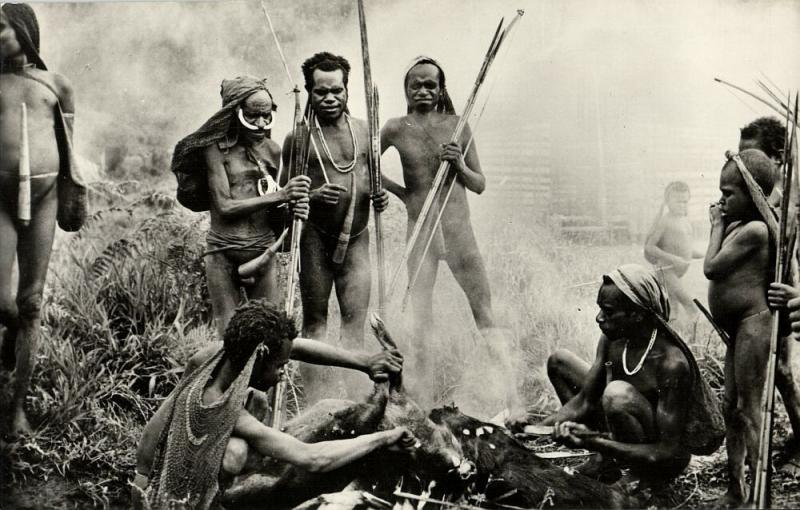 dutch new guinea, Native Kapauku Papuas slaughter Pigs, Koteka (1950s) RPPC