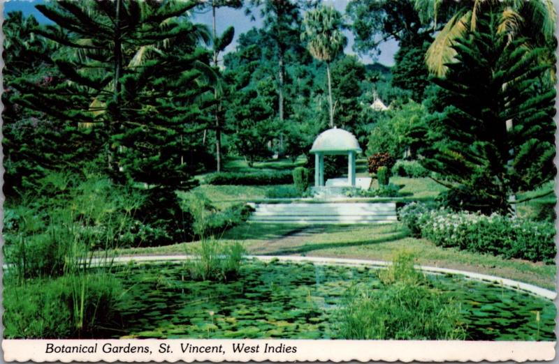 Botanical Gardens St. Vincent West Indies Unused Vintage Postcard D41