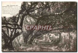 Old Postcard Charente inf st Sea Palace