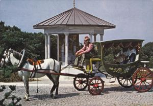 Old Turkish Carriage, Camlica Hill, ISTANBUL, Turkey, 50-70´s