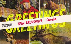 Greetings From New Brunswick Canada