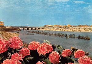 France Mimizan Plage du Courant et le Pont, flowers, fleurs