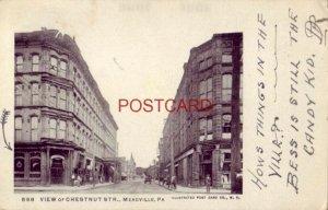 pre-1907 VIEW OF CHESTNUT STR., MEADVILLE, PA. 1907
