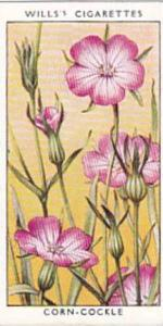 Wills Vintage Cigarette Card Wild Flowers 1936 1st Series No 7 Corn-Cockle