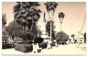 3543   Torreon Jardin  Juarez  RPC