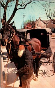 AMISH BISHOP HITCHES HIS HORSE AND WAGON PENNSYLVANIA DUTCH COUNTRY postcard