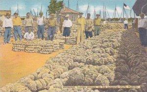 Florida Tarpon Springs Sponge Exchange In The Sunshine State