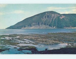 Pre-1980 TOWN VIEW SCENE Gaspe Nord Quebec QC p9492