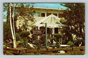 New Philadelphia OH- Ohio, Schoenbrunn Gardens, Gazebo Garden, Chrome Postcard