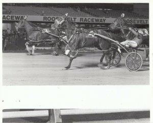 ROOSEVELT Raceway, Harness Horse Race, FAIR FELLA winner