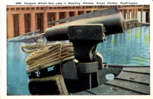 Grays Harbor, Washington - Harpoon Whale Gun used in shooting Whales - c1930